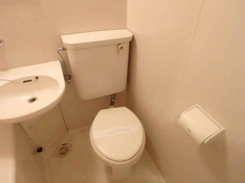 水洗式のトイレです