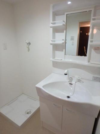 身支度に役立つシャワー付き洗面台です。