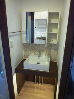 洗面台の足元に空いたスペースは猫ちゃんのトイレ置場として
