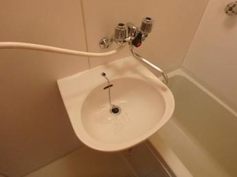 浴室に洗面ボウルがあります。