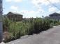 小野市垂井町の売地の画像