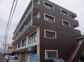 三郷市戸ケ崎のマンションの画像