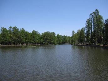 別所沼公園まで656m