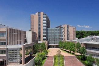 私立東北医科薬科大学まで1153m