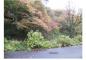 豊岡市日高町栃本の売地の画像