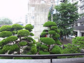 2階の眺望です。緑あり、気持ちがいいですね!