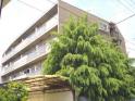 仙台市青葉区小田原7丁目のマンションの画像
