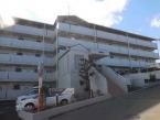 富士見市鶴馬1丁目のマンションの画像