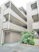 川口市戸塚1丁目のマンションの画像