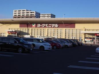 ヨークベニマル新田東店まで921m