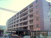 さいたま市南区沼影1丁目のマンションの画像