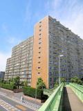 分譲賃貸 浦和白幡東高層住宅1号棟の画像
