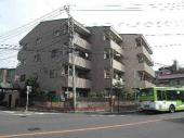 川口市南町1丁目のマンションの画像